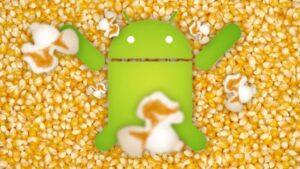 flash a custom kernel