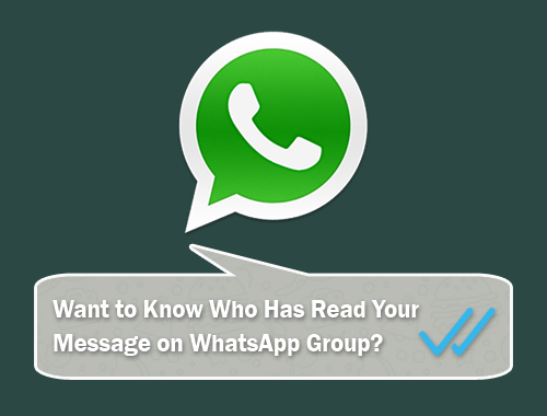How to Know Who Has Read My Whatsapp Group Message on Android 1